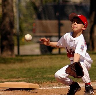 少年野球の新メンバー